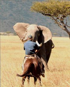 rando-cheval-kenya-03