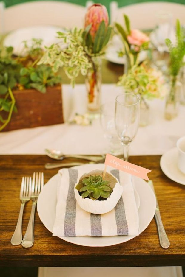 succulent.jpg